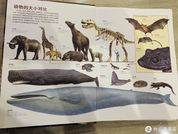 一个部分是动物资料馆,介绍了动物的饲养和观察方法、动物的学习、动物的进化和分类、动物的地理区划及灭绝动物等等丰富知识。