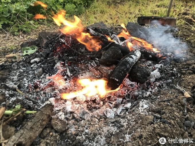 烤箱做烤番薯?野火烤的才有灵魂
