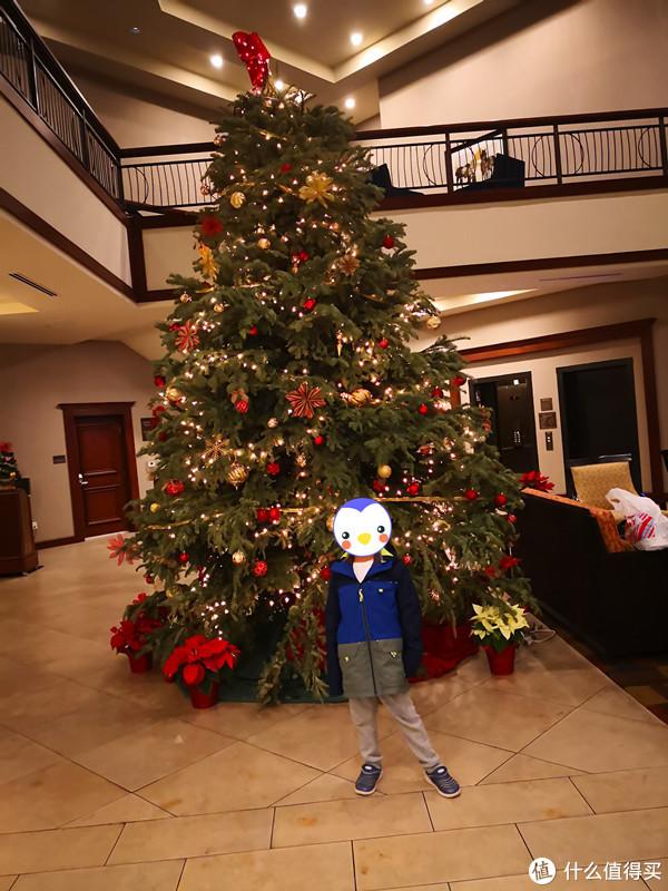 到达洛杉矶时是12月23日,浓浓的圣诞气息