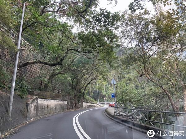 19春节去哪里 深港珠澳走一走 篇三 太平山&港大