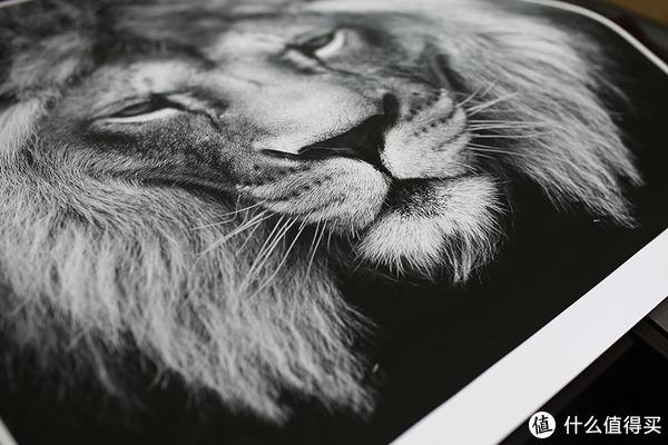 相片打印输出,有的时候还是很有必要的,就看价格和所需要的效果。