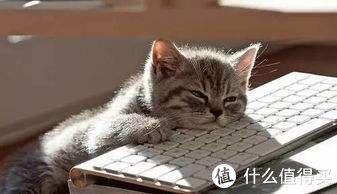 奶爸好累,想睡觉,分分钟入梦那种!然鹅还要给娃买衣~优衣库一站式购完!