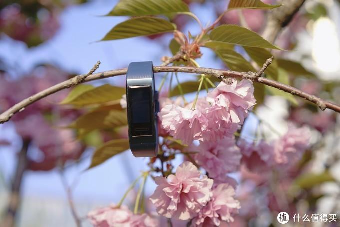 这个399的手环有着自己的独特之处---华为手环3pro测评