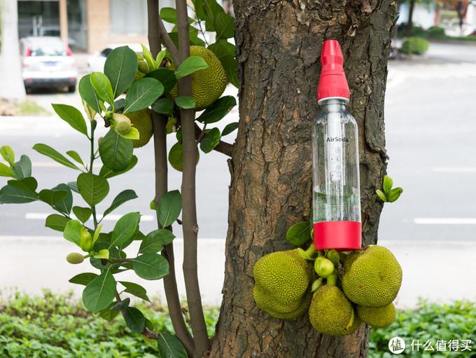 给更健康时尚的生活打打气——美国AirSoda苏打水机气泡机