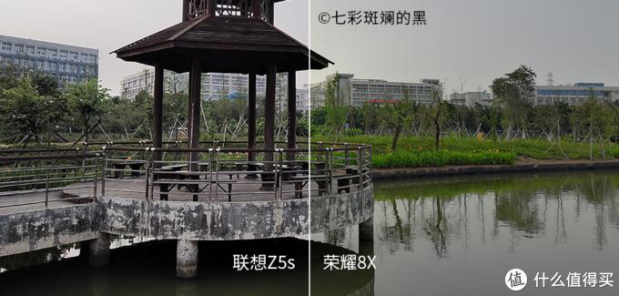 常见的绿植、风光场景
