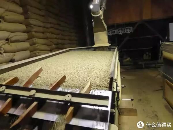 作为一名咖啡新手,如何从处理法去判断自己需要的咖啡口味