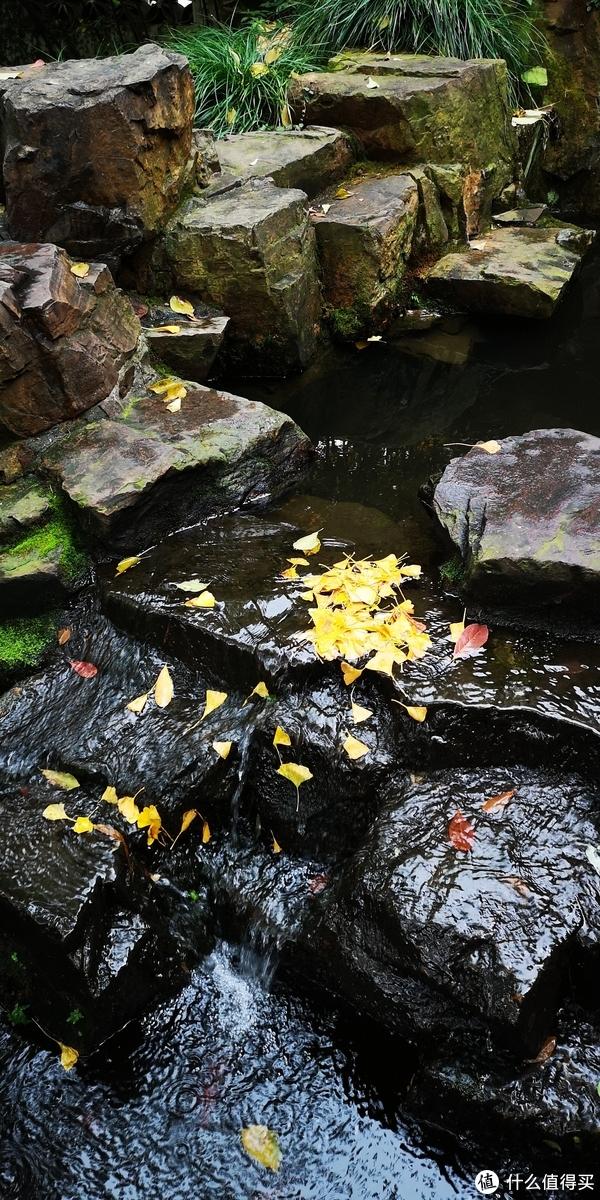 园林,不止苏州——家门口的寄畅园及无锡免费公园推荐