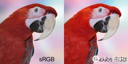 常见的sRGB和AdobeRGB饱和度对比(图片来自网络)
