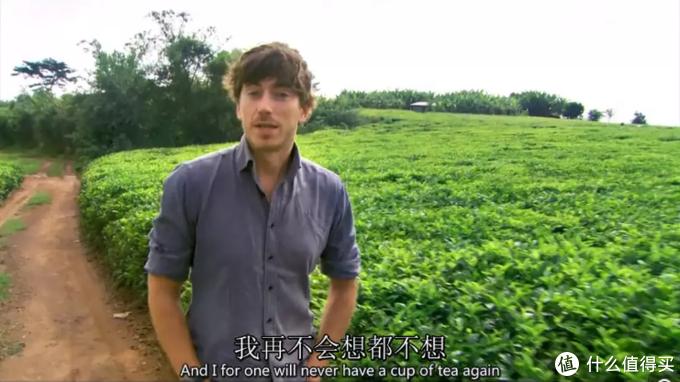 简单总结,爱茶人必看的十一部纪录片