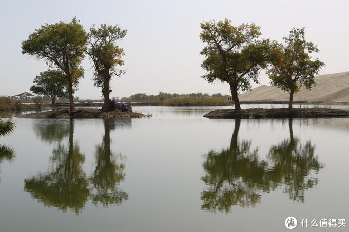 轮台-罗布人村落-塔里木河