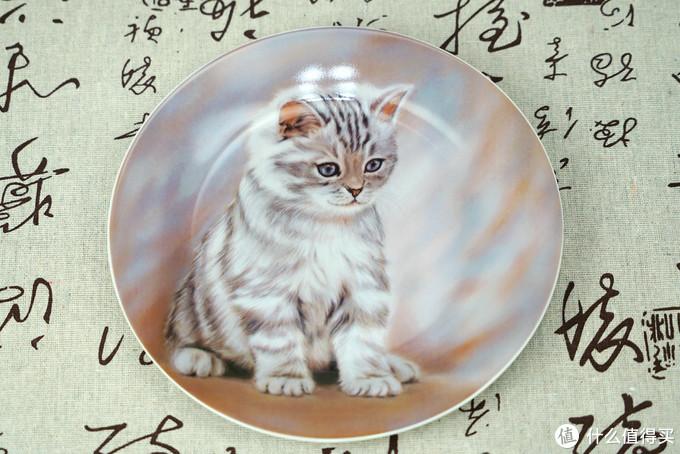 猫控的自我修养:被萌化了!这些年我写过的那些猫