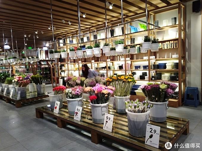 还有他们核心业务绿植业务,啊,西安怎么没有呢?好气啊,希望西安也有啊!很少见这么漂亮的花草绿植店面啊!