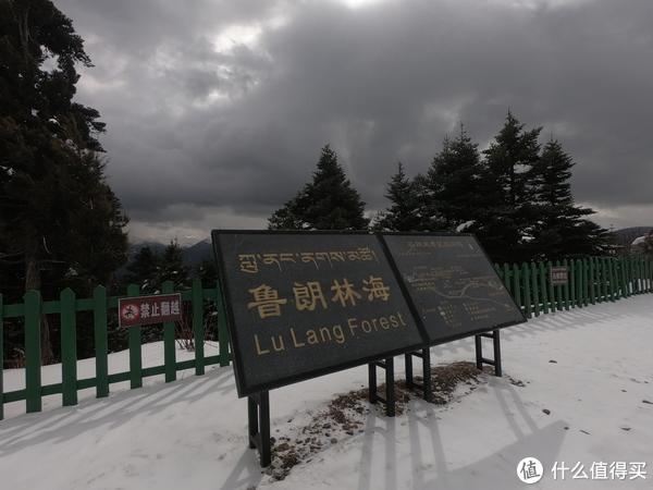 游西藏十二天,未知即风景。穿越四季的高原,心心念念皆往之(大量动图)