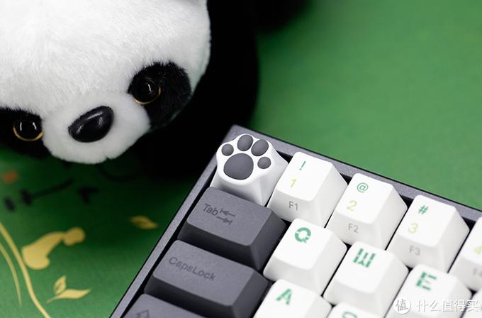 萌萌的猫爪键帽,难道要换键盘系列。。