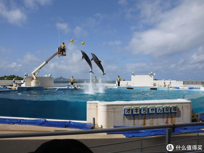 冲绳海洋博公园游记