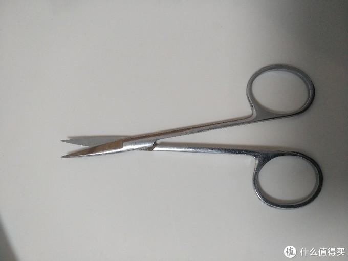 修剪的工具剪