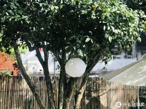 隐于梅灵山脚的喜舍,行赏葱郁,卧观星辰,睡进杭州最美的秋色里