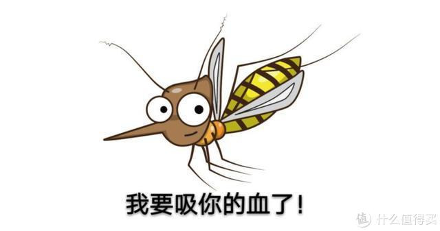 (图源网络侵则删)