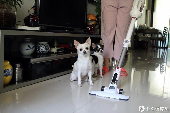 会弯腰的吸尘器,让汪星人爱上家的感觉-·小狗T10 Pro体验