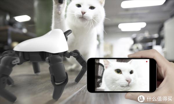手机也可以操控它噢!