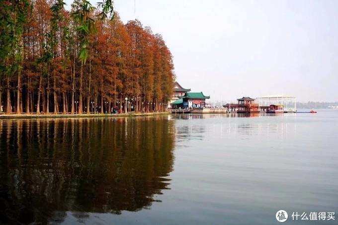 武汉印象:黄鹤白樱耀都会,湖光山色蕴楚魂