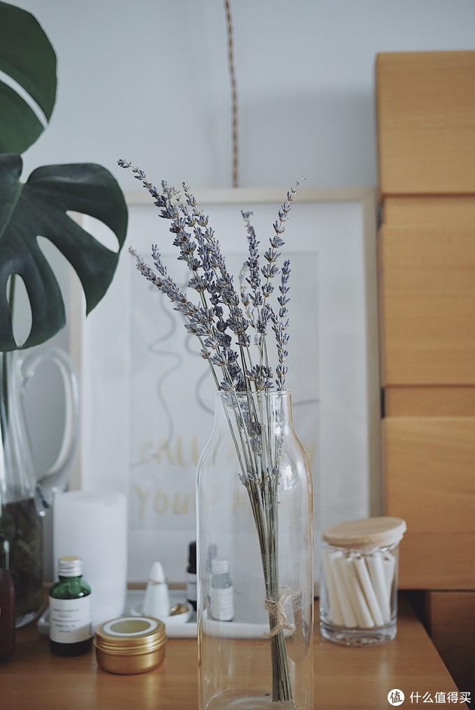 薰衣草。很容易掉花。很好的精油提取花材,有安神、助眠的功效。虽然有小瓶精油,但还是放了一小束干花在床头,又好看又好闻。