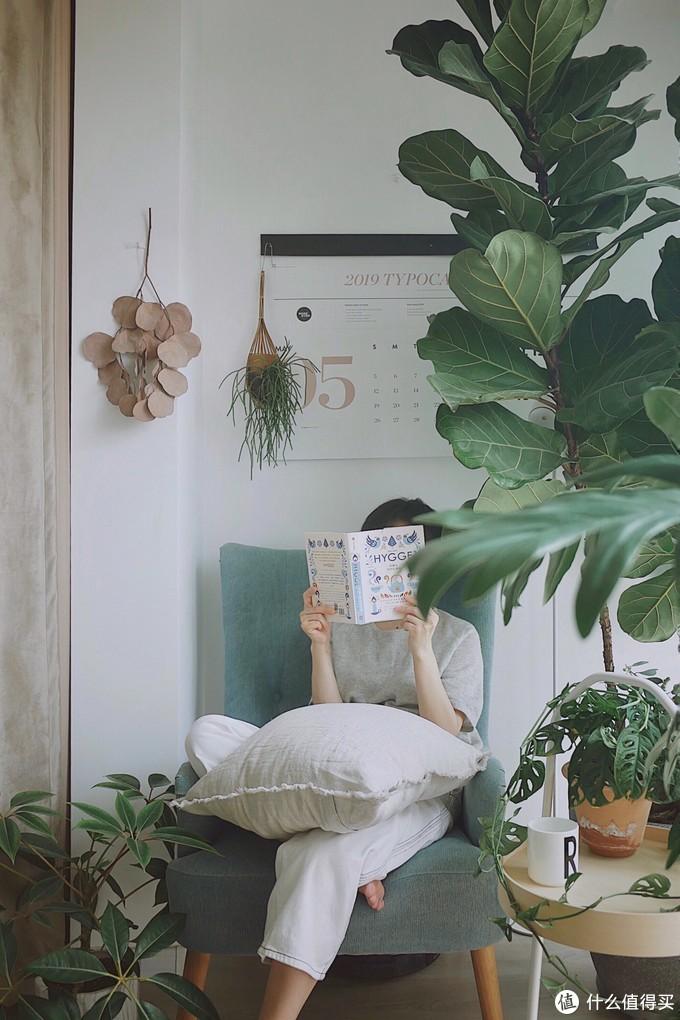 上图那支鲜叶目前还挂在阳台上(图中左侧褐色的叶子)