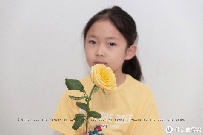 一朵黄玫瑰的记忆