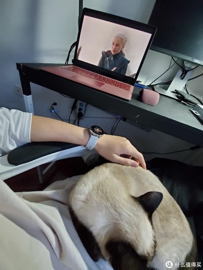 微软Surface Arc无线蓝牙折叠鼠标开箱!龙妈走的第一天 想她