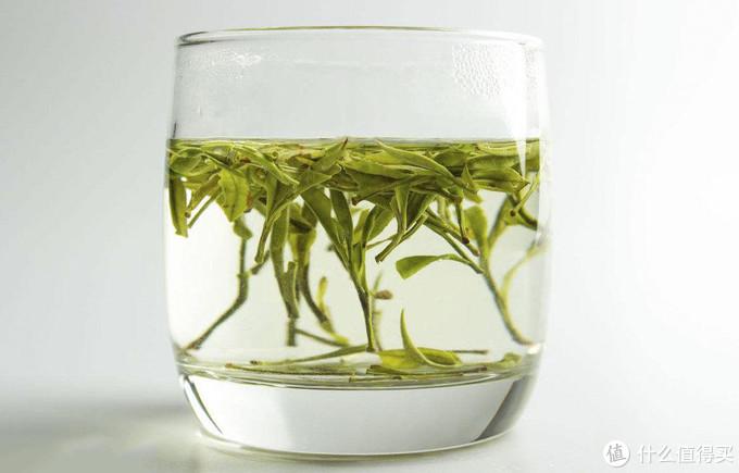 为啥会觉得茶叶很难喝?我原来真是这么觉得的