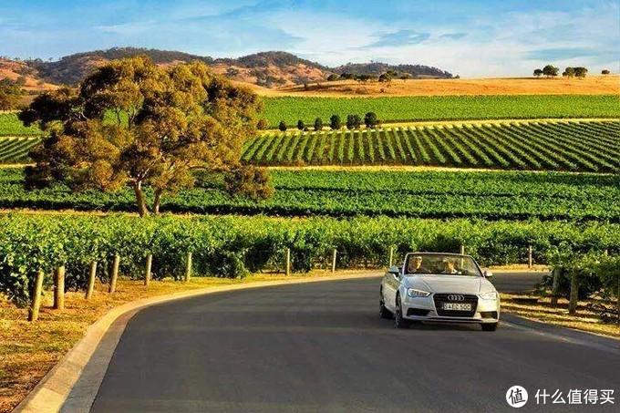 南澳大利亚丨一个可以满足你对旅行所有想象的地方