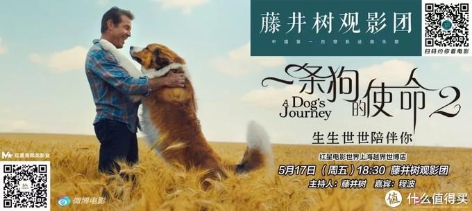 【视频来了】《一条狗的使命2》感动全场,丧失理智打满分!
