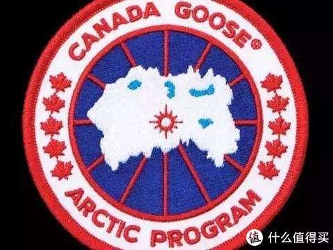 618学堂-论加拿大鹅的替代