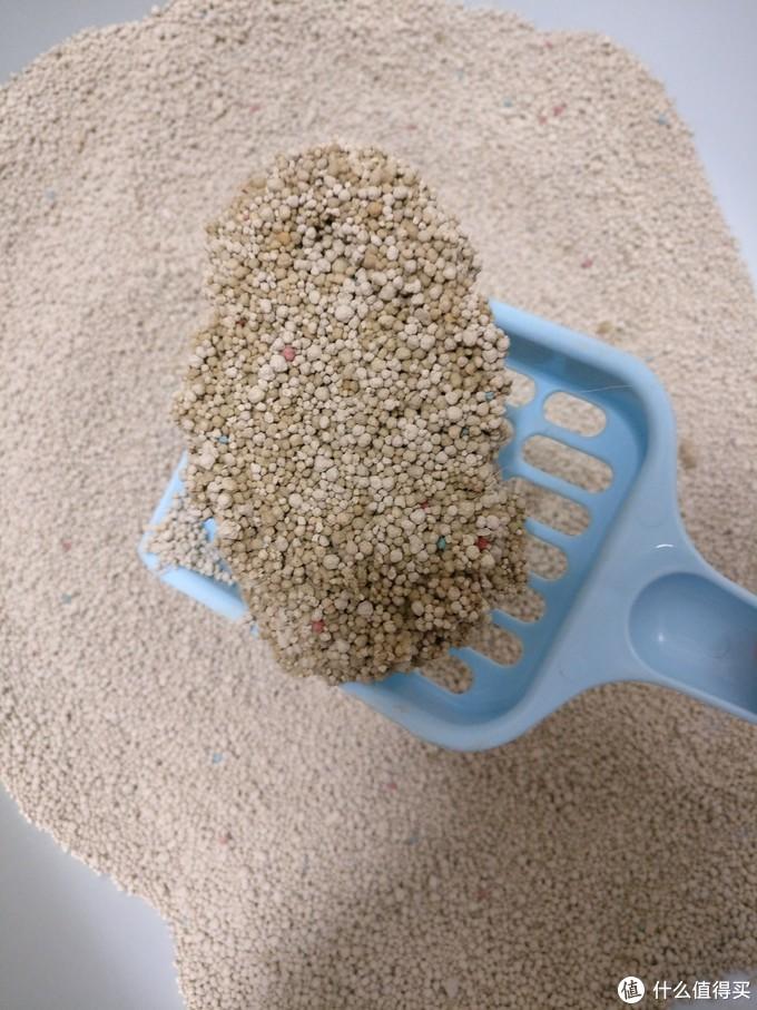 凌岩猫砂尿团对比