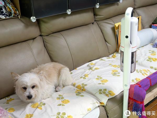 家居清洁不止一面,睿米NEX无线吸尘器评测