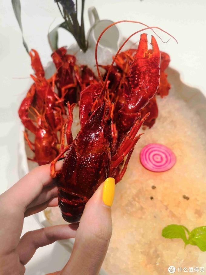 活久见!论个卖的小龙虾,好吃吗?