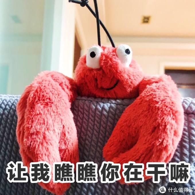 Jellycat的小龙虾真的太傻萌了 强烈种草-夏天到了就是要安排龙虾