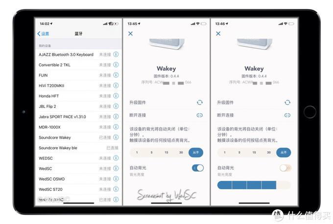 系统级选项这可以对固件,蓝牙连接, 以及音响正面面板LED灯背光时间及亮度设置。 亮度可以设定自动亮度。