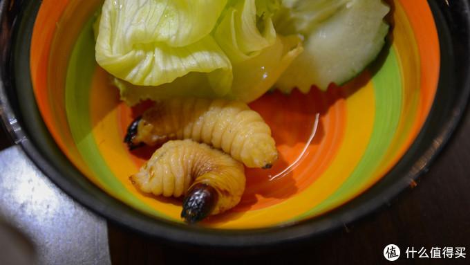 亚庇DPlcae的生吃虫子