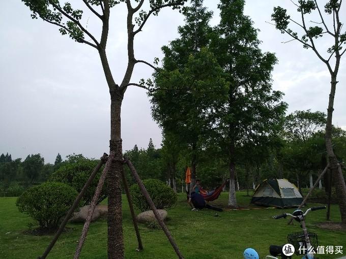 徐浦大桥桥头堡/世博绿色出行林(徐汇区的尾巴尖尖上)开放一半的免费公园