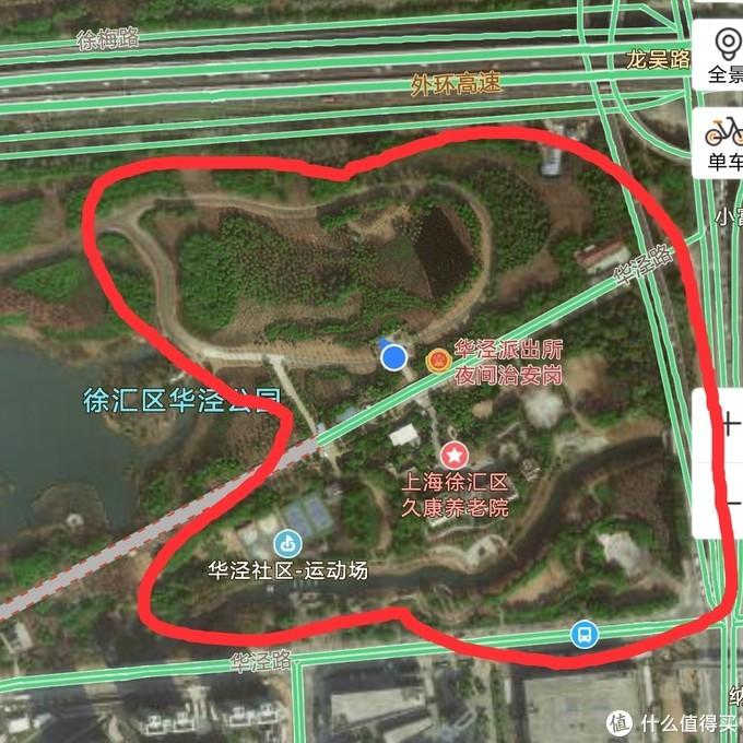 外环线边上的开放式华泾公园(跑步 旱冰 滑板和骑行的好去处)枇杷杨梅树