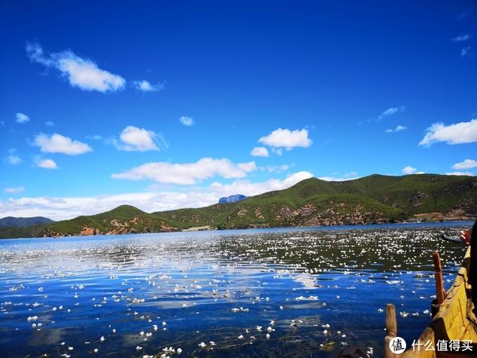泸沽湖花海
