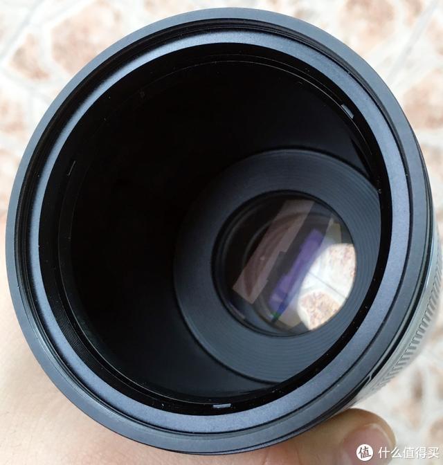 从对焦结构到光学设计,一次关于微距镜头的畅聊