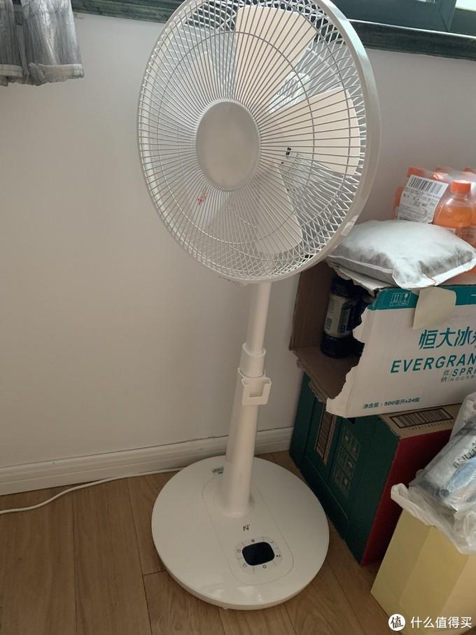 我家的9个电风扇 小米1X 美的小清羽 网易  爱丽思空气循环扇 吊扇 鸿运扇