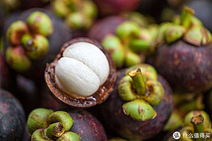 在泰国吃水果,咱们直接去Suphattra Land Royong果园现摘现吃