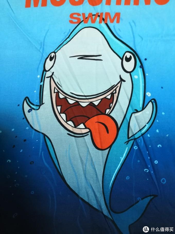 可爱的鲨鱼。