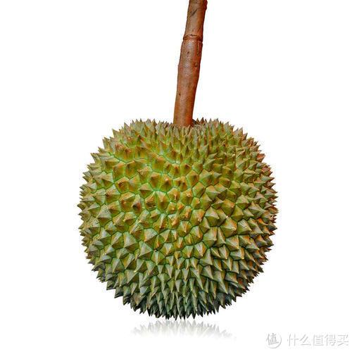 长柄价格属于中等偏贵一点那种,口感上很粘稠,会有挂喉的感觉,会有牛奶的香甜气息,泰国皇室礼赠用的就是这个品种的榴莲