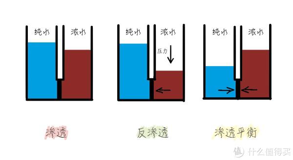"""▲RO是英文""""reverse osmosis""""的缩写,中文意思是""""反渗透"""""""