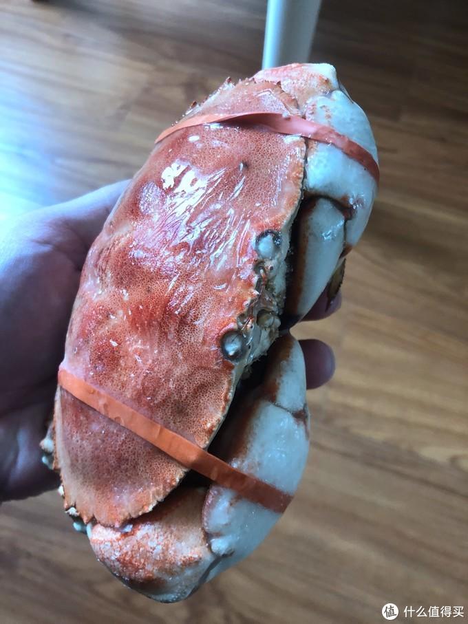 三分钟速食-翔泰 冷冻 加拿大进口熟冻 面包蟹 400g 1只盒装 开箱试吃