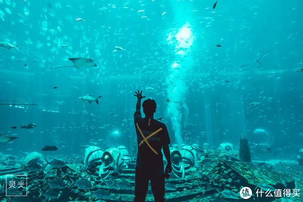 坐300块的廉航去三亚住6W块一晚的水底套房是怎样一种体验?